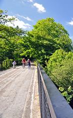 Torrington commons and the Tarka Trail